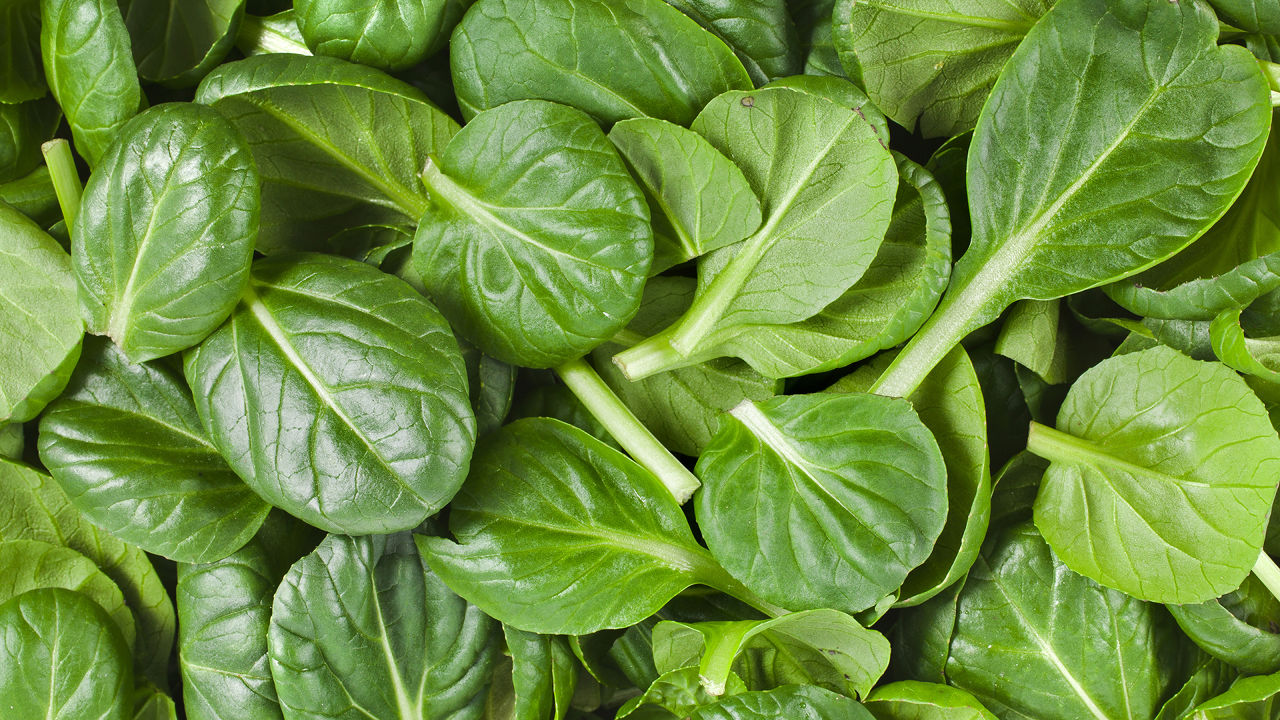 baby-spinach-nutrition-2